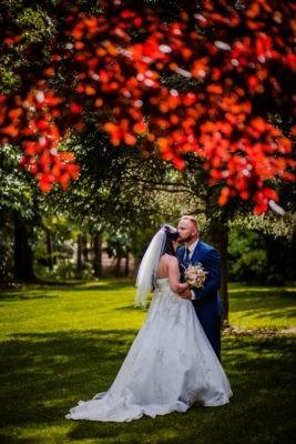 Szerelmes házaspár színes fa alatt