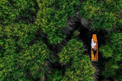Kreatív fotózás drónnal a tó közepén